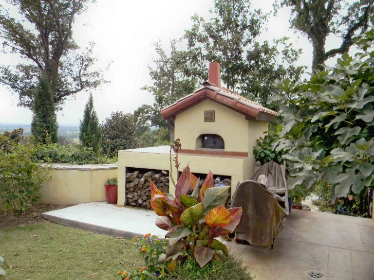 Pizza oven with patio and fuel storage